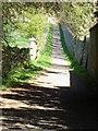 NT9167 : Footpath to St Abbs Head by Maigheach-gheal