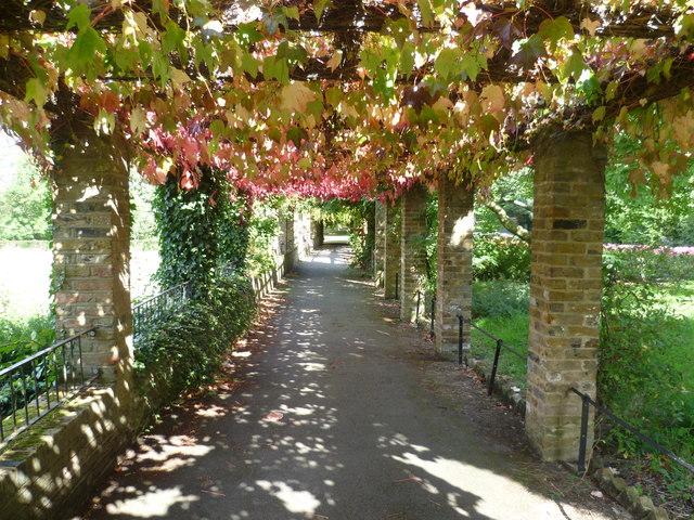 Inside the pergola in Ruskin Park