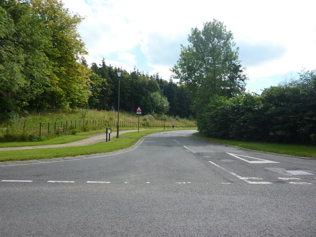 Wellington Drive, Wynyard Village