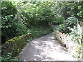 SX8381 : Hyner Bridge  by Robin Stott
