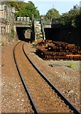 NT2671 : Edinburgh South Suburban line at Newington by kim traynor