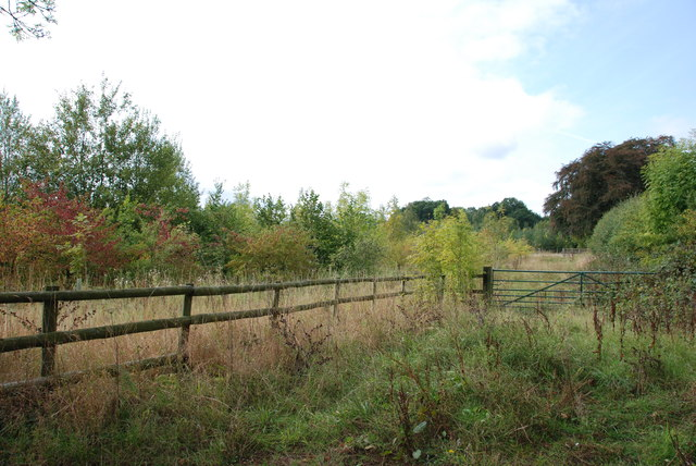 Land turned over to a Plantation of Trees