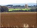SE7169 : Crop harvested, Castle Howard Estate by Pauline E