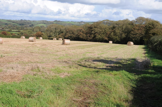 Bales in a field above Lamphey
