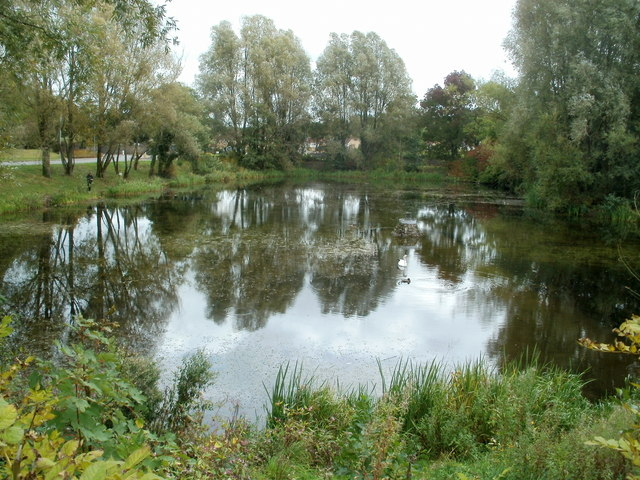 Reflections on a pond, Llantarnam Park Way, Cwmbran  by Jaggery