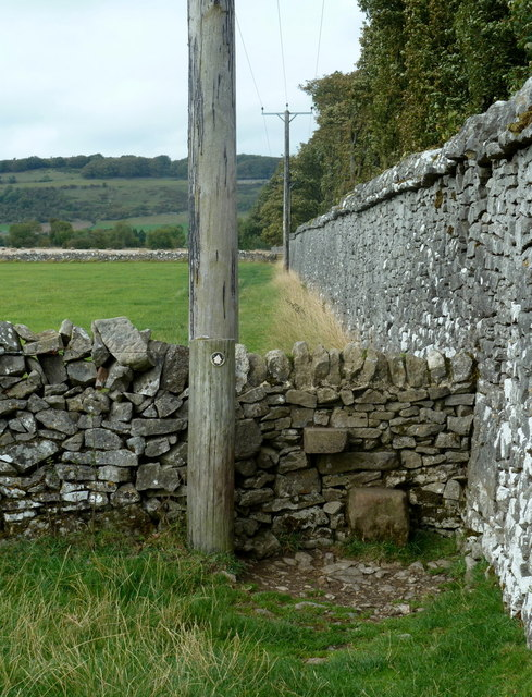 Path by Long Rake Plantation