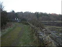 NM6947 : Estate road, Ardtornish by Peter Bond
