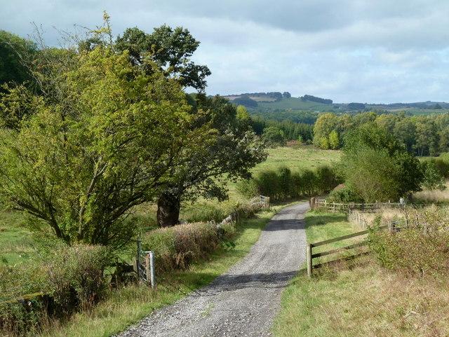 Track below Coombs Farm