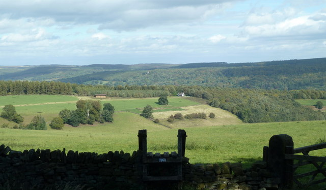 View from the forest boundary wall