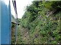 TR2648 : East Kent Railway, Golgotha Tunnel by Helmut Zozmann