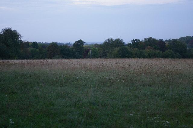 Oaks Park, Sutton, evening twilight