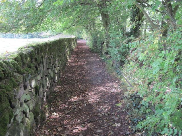 Footpath towards Tansley