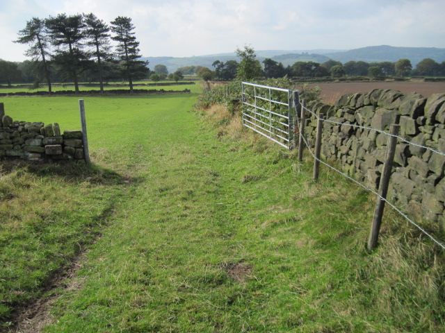 Footpath from Blakelow Farm towards Tansley Knoll
