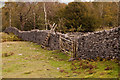 SD4487 : Steps over Drystone Wall by Martin