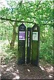 TQ5584 : Bonnetts Wood by N Chadwick