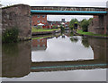 SJ5680 : Bridgewater Canal (Norton Arm), near Preston Brook, Cheshire by Roger  Kidd