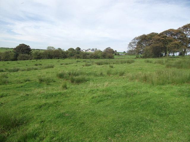 Rough pasture near Asmus Farm