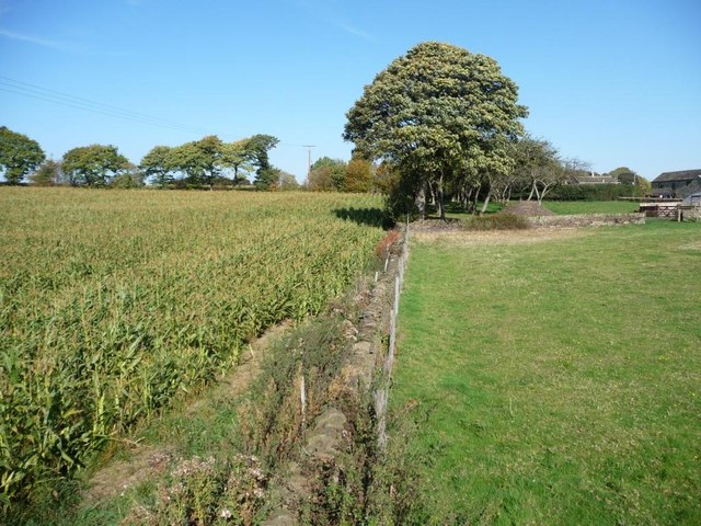 Boundary wall, White House, Lower Denby
