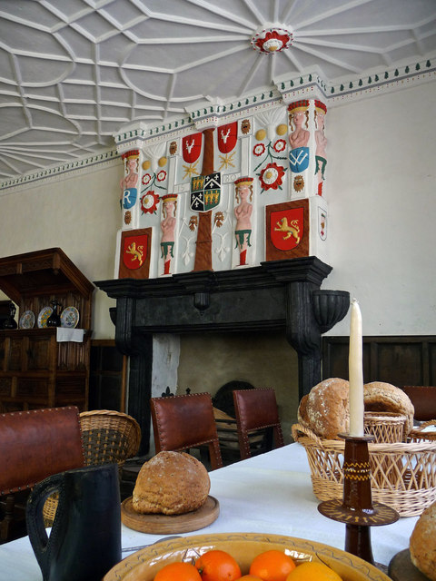 The Hall, Plas Mawr