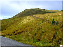 NS2472 : Hillside Hill by Thomas Nugent