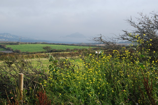 Cornish hedges, with St Michael's Mount in the distance