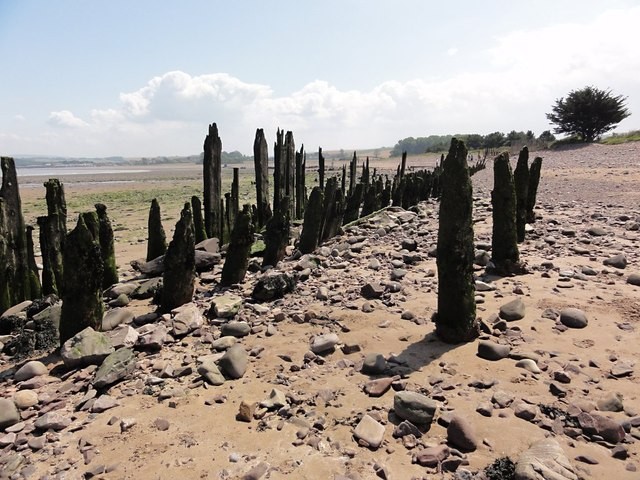 Old Wooden Pilings on the Beach