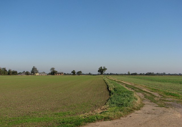 Fenland view near Eye Hall Farm