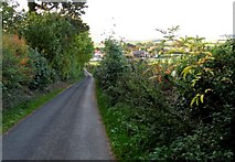 SK9341 : Towards Barkston from Minnett's Hill by Andrew Tatlow