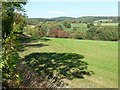 SE2607 : Green field and autumn colours, Daw Hill by Christine Johnstone