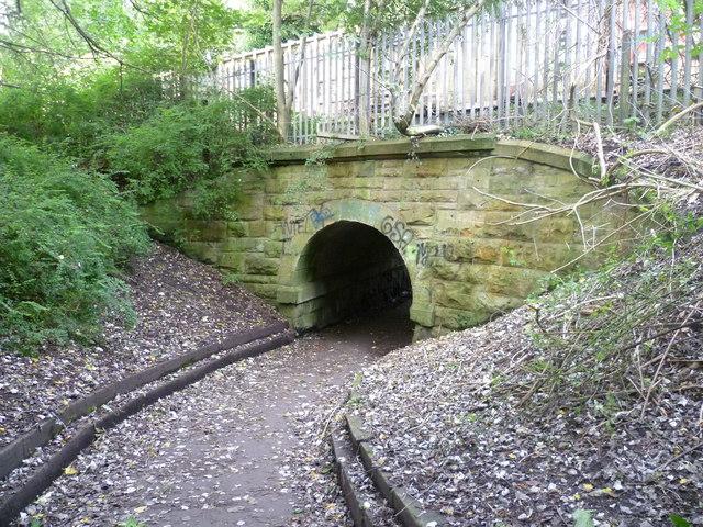 Old railway bridge at Bonnington by kim traynor