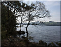 SD2992 : Coniston Water by Ian Greig