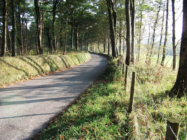 Road  to Coppet Hall