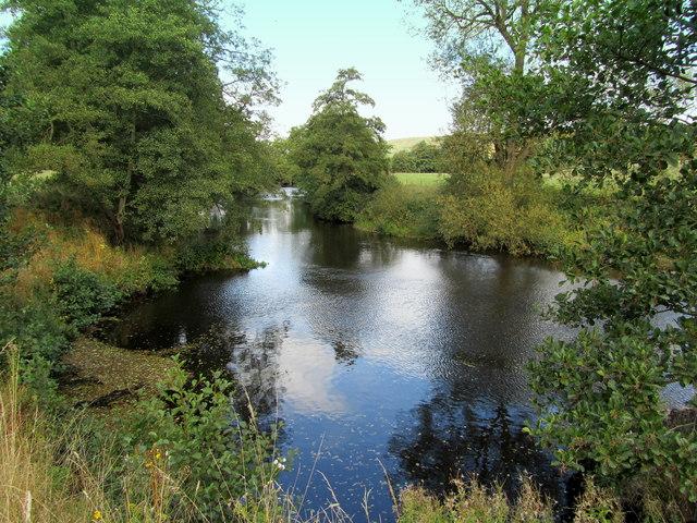 River Derwent by Bank Wood