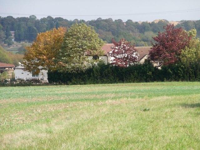 Autumn colours, Lea Farm, Moorhouse