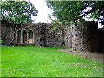 TQ1979 : Mock Gothic ruin in Gunnersbury Park by Thomas Nugent