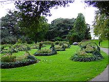TQ1979 : Gunnersbury Park by Thomas Nugent