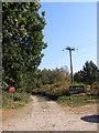 TM3351 : Sandlings Walk Bridleway to Wantisden Corner by Adrian Cable