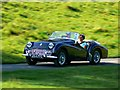 ST7475 : Green Triumph TR3A at 'Spirit of the 60s' 02 October 2011 Dyrham Park by Brian Robert Marshall