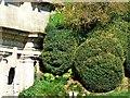 ST7475 : Topiary, Dyrham Park by Brian Robert Marshall