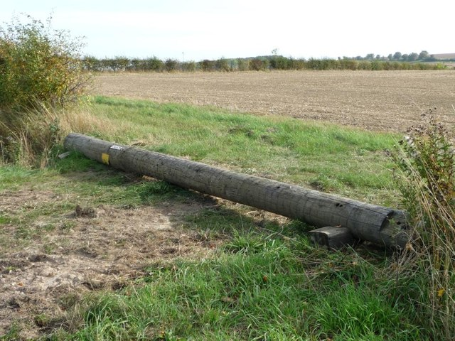 New use for a telegraph pole