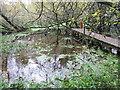 NO5250 : Pool by Balgavies Loch by M J Richardson
