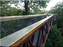 TQ1876 : XStrata Treetop Walkway in Kew Gardens by Graham Hogg