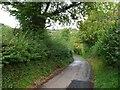 ST6265 : Country Lane near Blackrock by Nigel Mykura