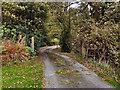 SD7517 : Gate on Track Near Barons Farm by David Dixon