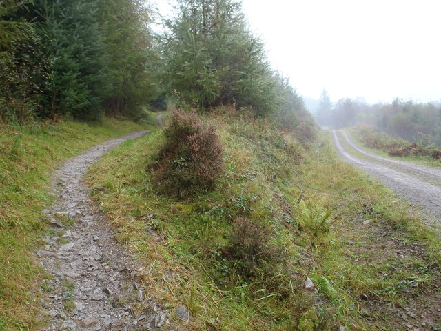 7 Stanes cycle track meets forest track, Dalbeattie Forest