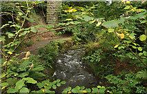 J4681 : The Crawfordsburn, Crawfordsburn Country Park (1) by Albert Bridge