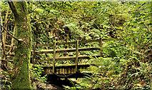 J4681 : Closed footbridge, Crawfordsburn Country Park by Albert Bridge