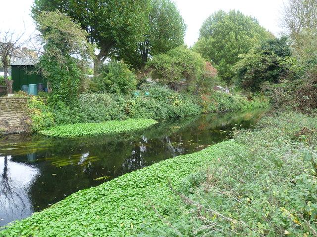 River Wandle near Earlsfield