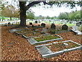 TQ2673 : Wandsworth Cemetery by Marathon