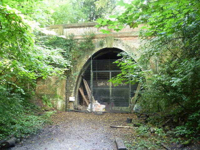 Entrance to Crescent Wood Tunnel, Sydenham Hill Woods